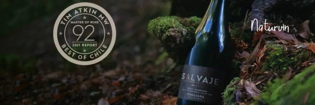 Salvaje 2020 – ett naturvin från Chile